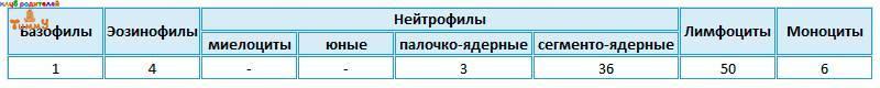 Пример 1 лейкоцитарной формулы