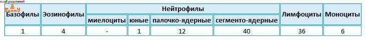 Пример 2 лейкоцитарной формулы