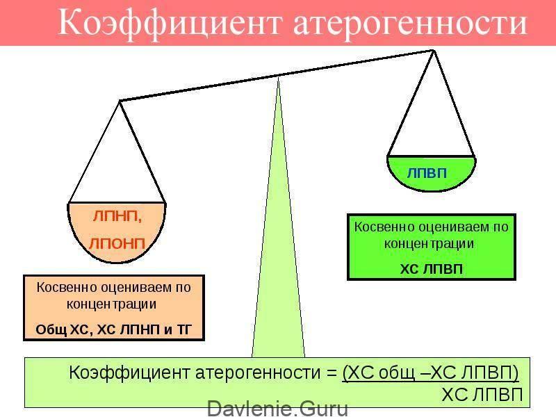 Коэффициентатерогенности