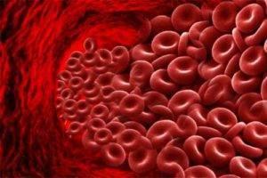 Рфмк анализ крови что означает