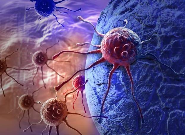 Лабораторная диагностика о чем говорит оак