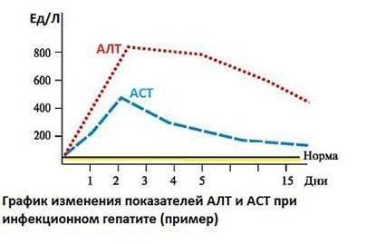 Показатели крови алт и аст норма