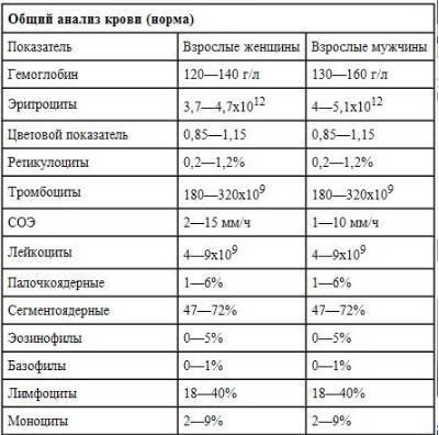 Какие показатели входят в общий анализ крови