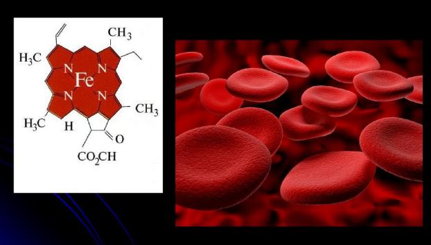 Цветовой показатель крови понижен у взрослого причины