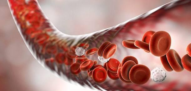 Нормы содержания эритроцитов в крови у взрослых