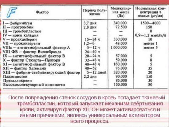 Коагулограмма расшифровка у взрослых норма в таблице