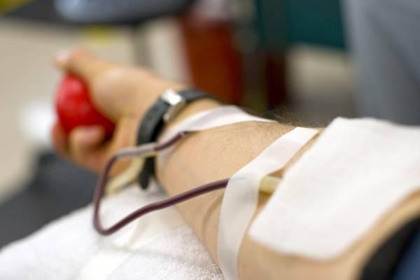 Переливание крови из вены в ягодицу польза